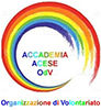 Accademia Acese100